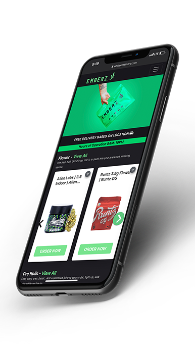 friendly mobile website phone